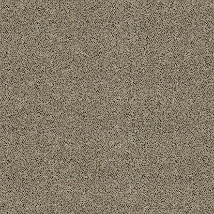 obrázek Zátěžový koberec Optima Sde New 35