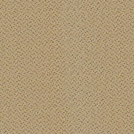 obrázek Zátěžový koberec Fortesse Sde New 138