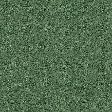 obrázek Zátěžový koberec Optima Sde New 25