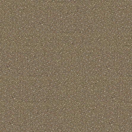 obrázek Zátěžový koberec Fortesse Sde New 40