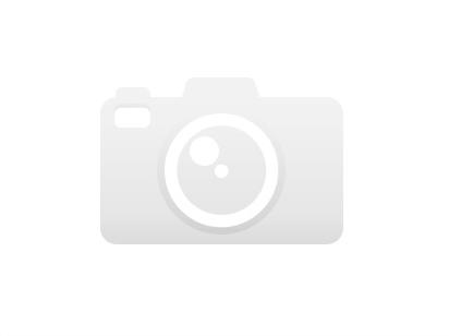 Podlahová lišta soklová - Cezar Premium 207 P010 407